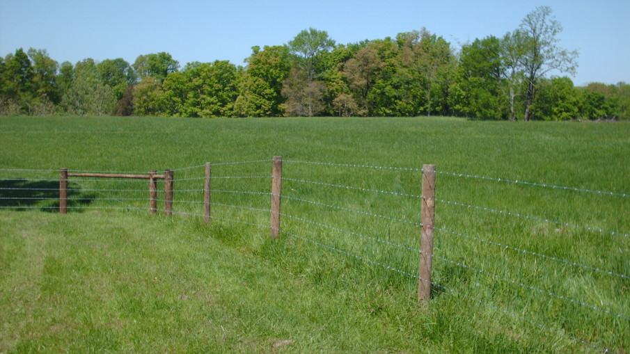 Indiana agricultural fencing barbed wire