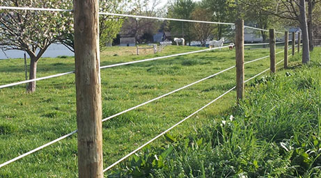 Indiana Agricultural Fencing Equine